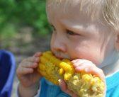 Παιδική παχυσαρκία – Διατροφικά tips για βελτίωση διατροφικών συνηθειών των παιδιών