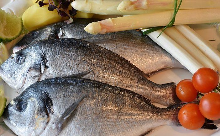 εισαγωγη-ψαριου